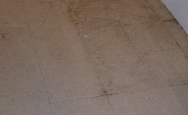 Dull Looking VCT Floor